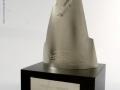 Terason Pinnacle Award