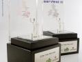 AFB-Capital-Trophy-Johannesburg-Gauteng.jpg