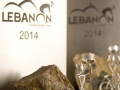 King-of-Lebanon-MTB-Trophy-Cape-Town.jpg