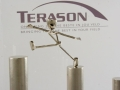 Terason Award