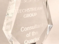 Techstream Group Consultant of the Quarter Award
