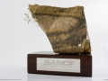 15 - SANCF National Boulder Champ Trophy 02.jpg