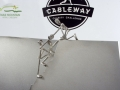 The Cableway Charity Challenge Trophy