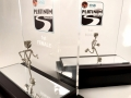 The FNB Platinum Trail Run trophies